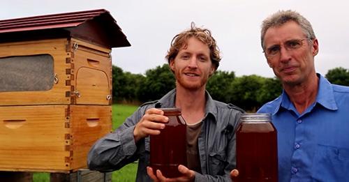 invento-miel-grifo