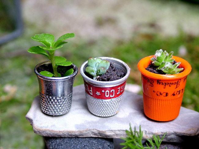mini_jardines_3