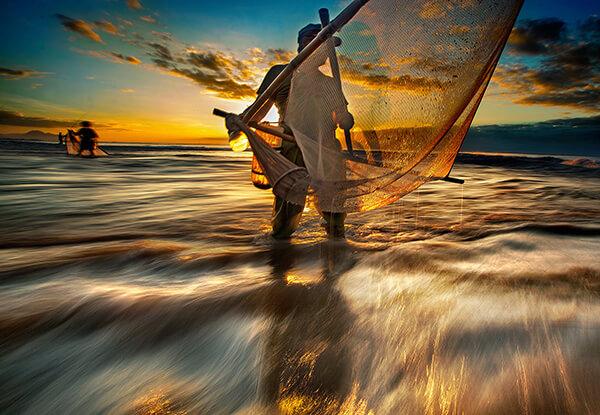 Fishing fry /  撈魚苗