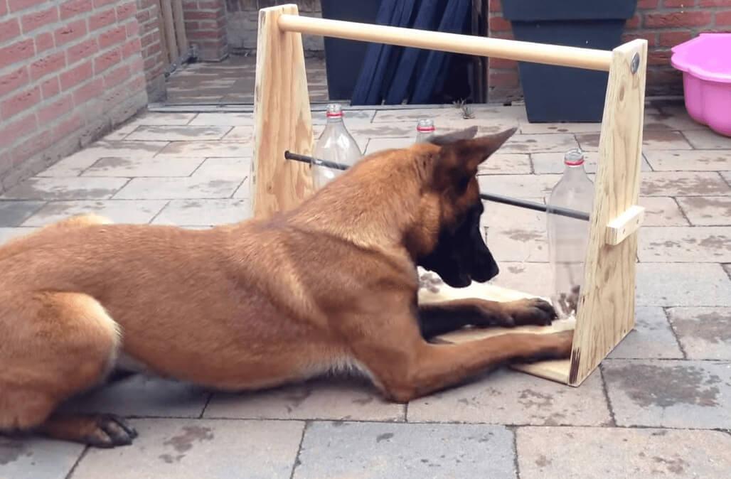 perro-juguete