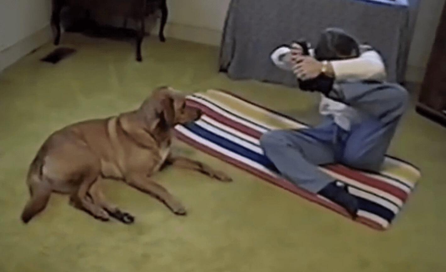 perro-practica-yoga