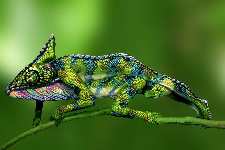 chameleon-body-painting-optical-illusion-johannes-stotter