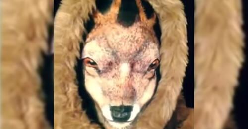 https://lavozdelmuro.net/puede-parecer-un-ciervo-pero-realmente-es-una-mujer-llevando-el-maquillaje-al-extremo/