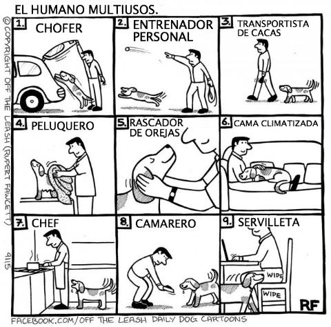 logica de perros 2