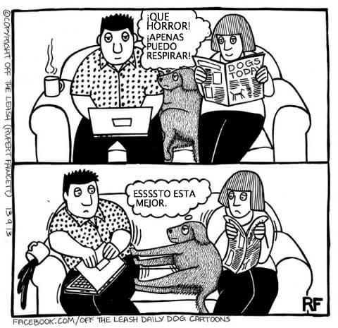 logica de perros 7