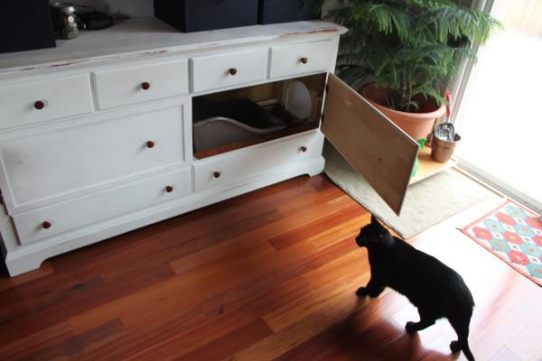 Si tienes gatos en casa te va a interesar este proyecto de bricolaje