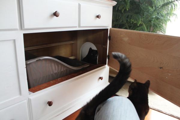 mueble arenero para gatos 12
