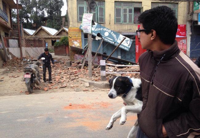 terremoto nepal 11
