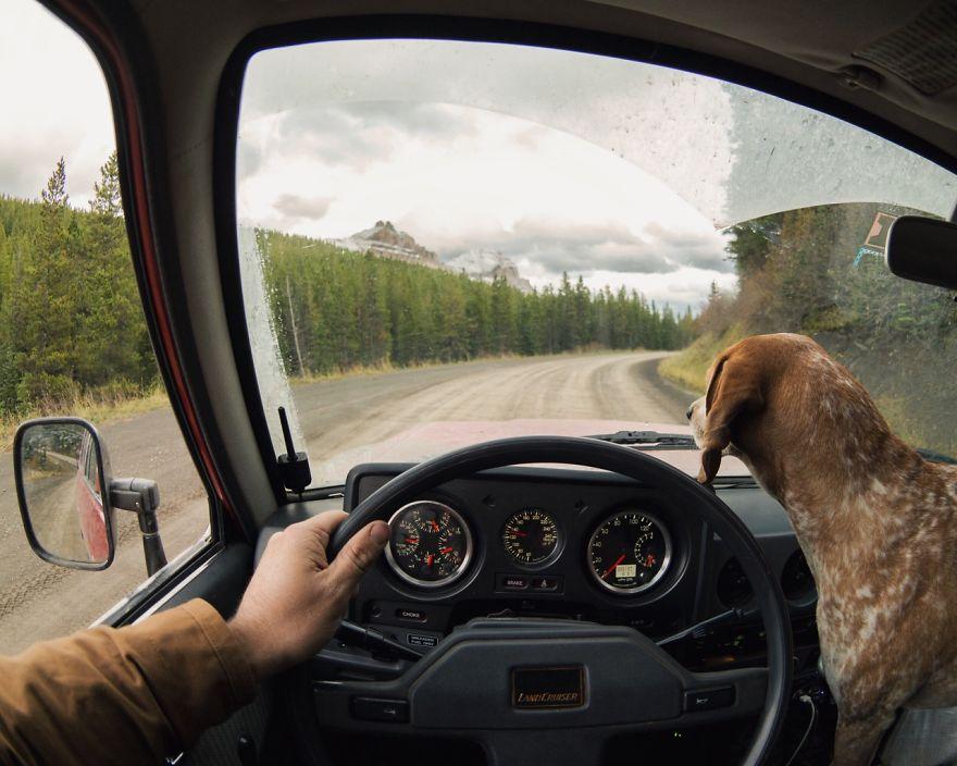 Perro y fotografo viaje 11