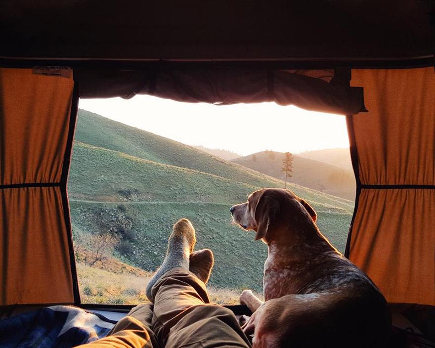 Perro y fotografo viaje 3