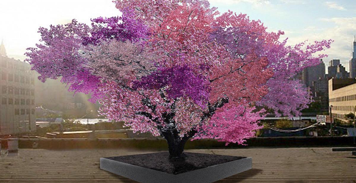 arbol-frutal