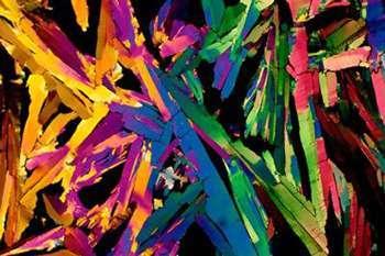 cosas microscopio 10
