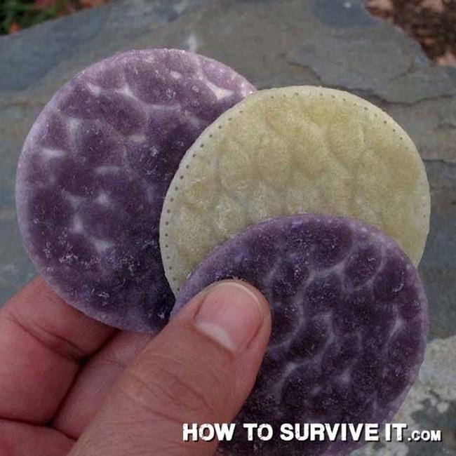trucos de supervivencia 4