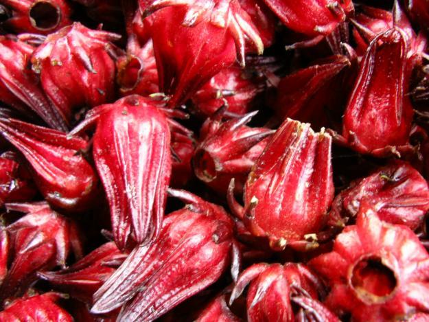 1305465859_16213971_1-Fotos-de--Vendo-Hibiscus-Sabdariffa-Rosella-Flor-de-Jamaica-Rosa-China