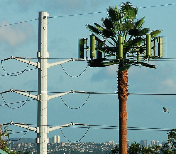 Antenas de Telefonia camufladas 29