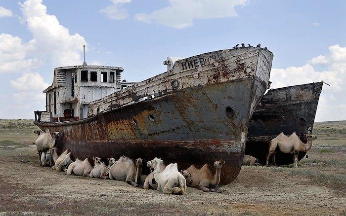 Mar de Aral 1