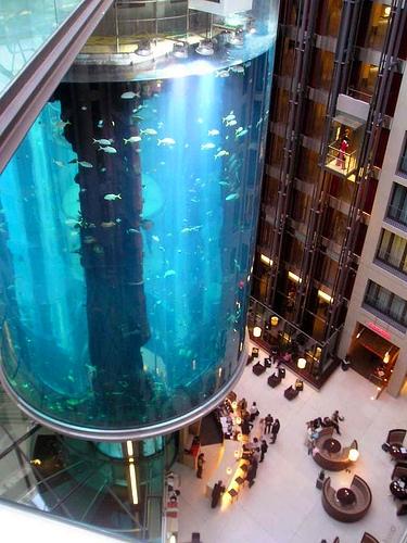 ascensores 7