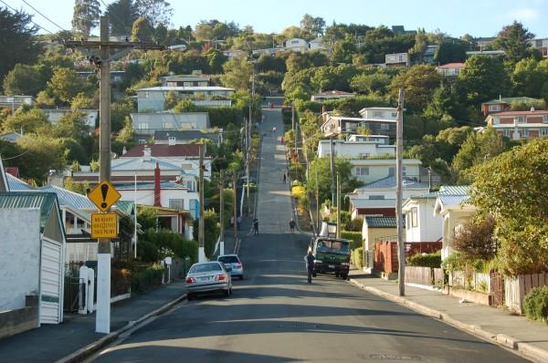 calle dunedin 1