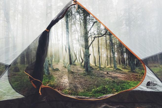 campings molones 9