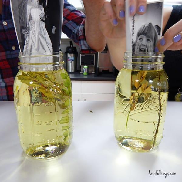 fotos en aceite 5