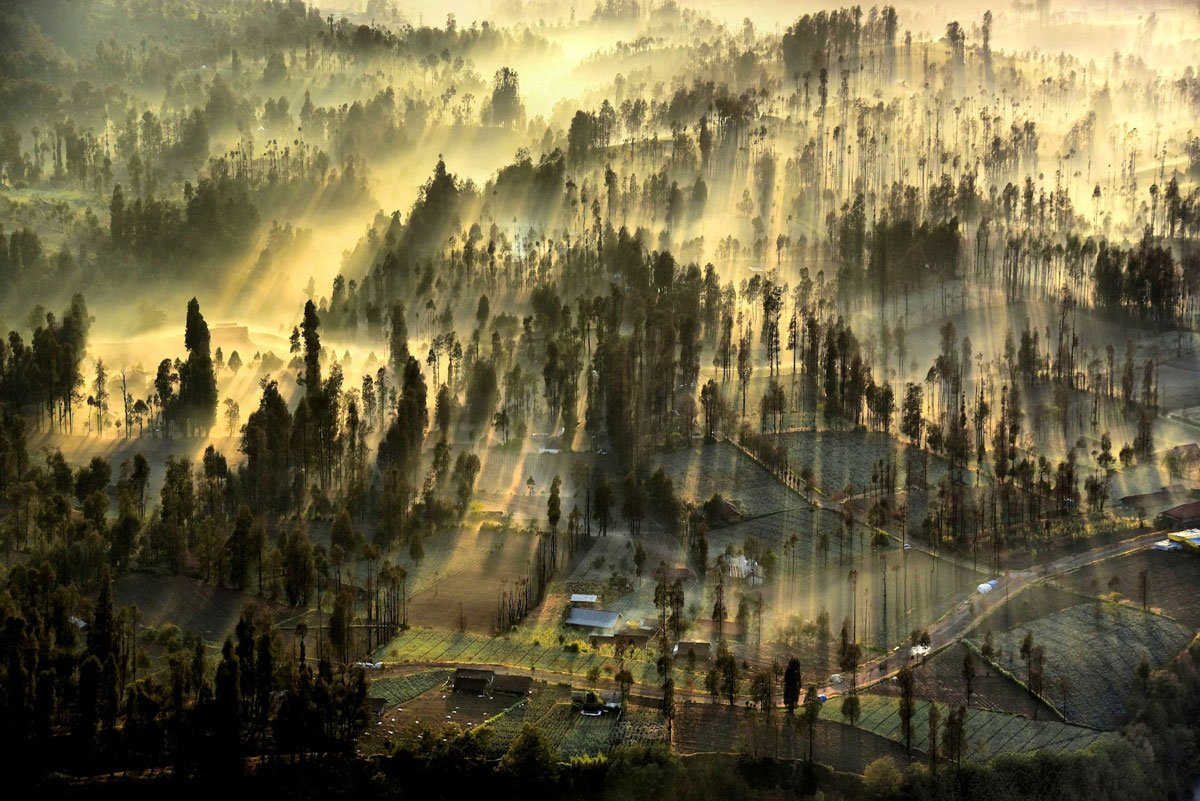 fotos_national_geographic_4
