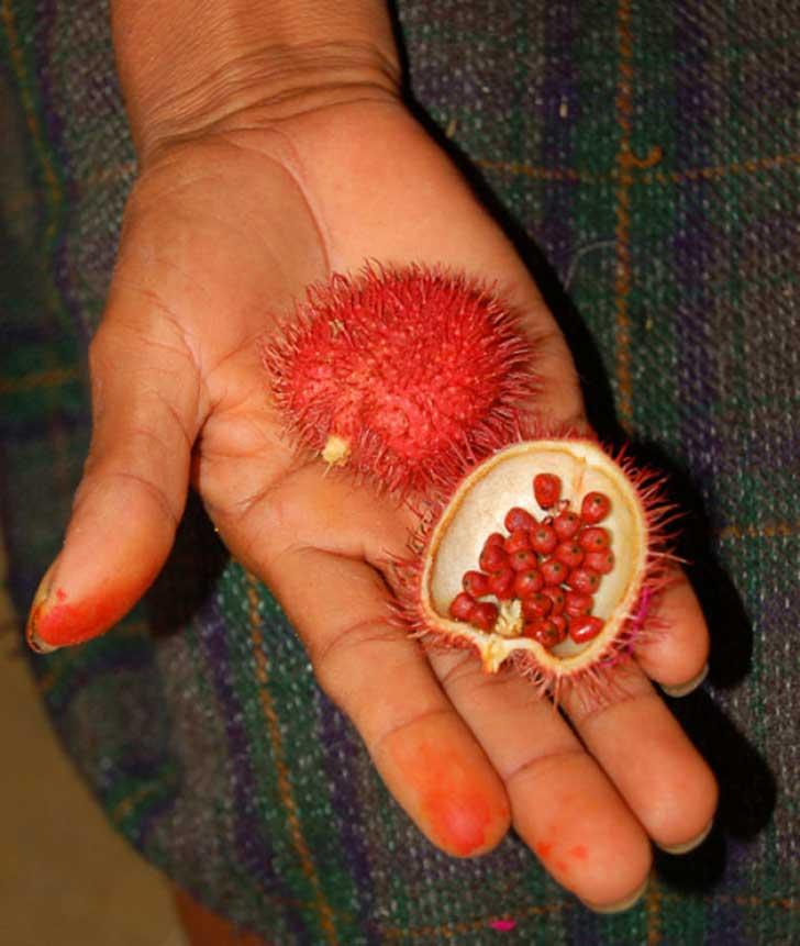 frutas raras 2
