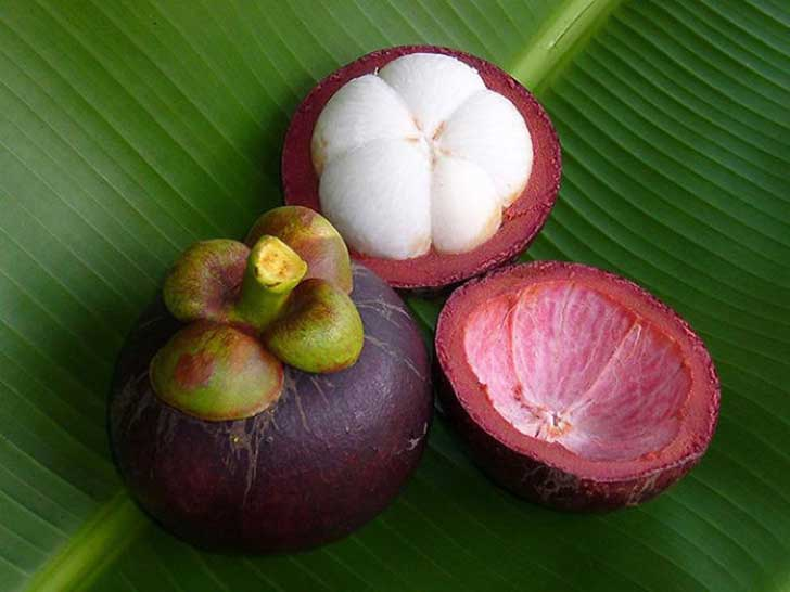 frutas raras 9