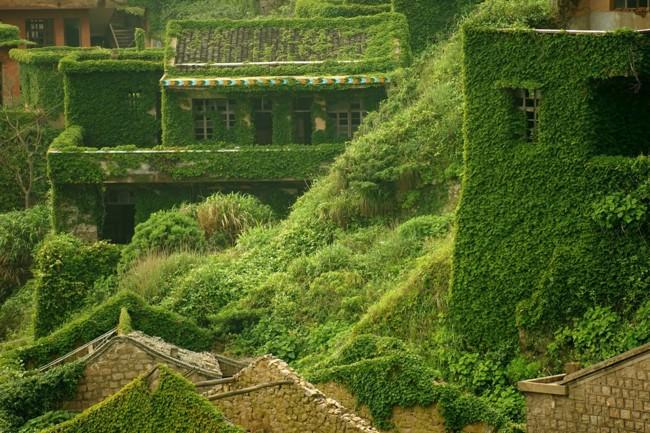 pueblo verde 12