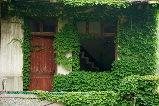 pueblo verde 3