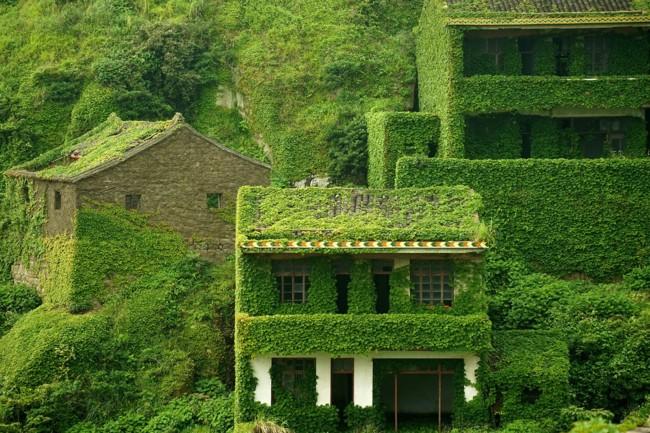 pueblo verde 5
