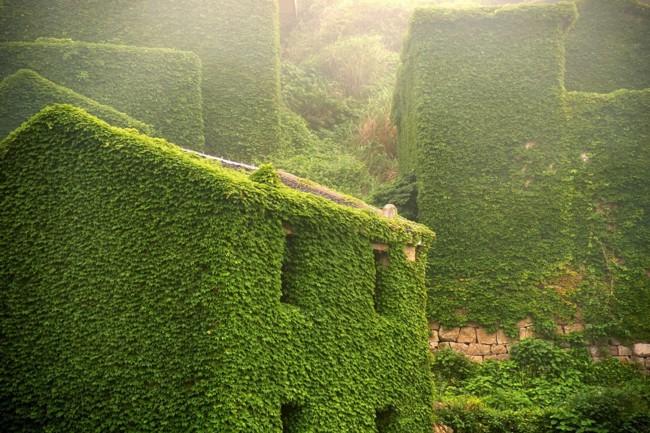 pueblo verde 6