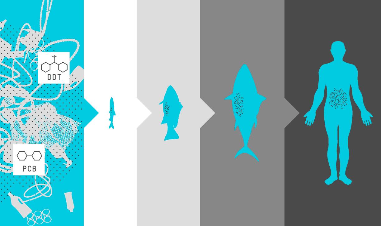 sistema de limpieza oceanico 2