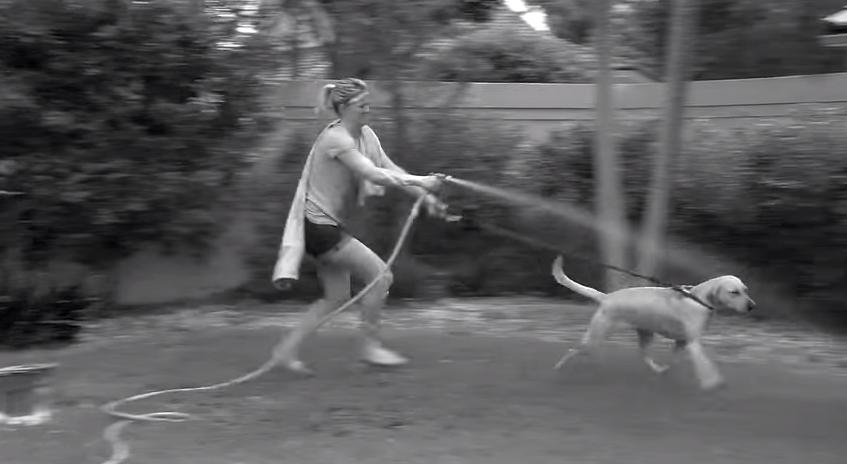 Porque tu bien sabes, que tu perro solo huye del agua si lo riegas con una manguera normal