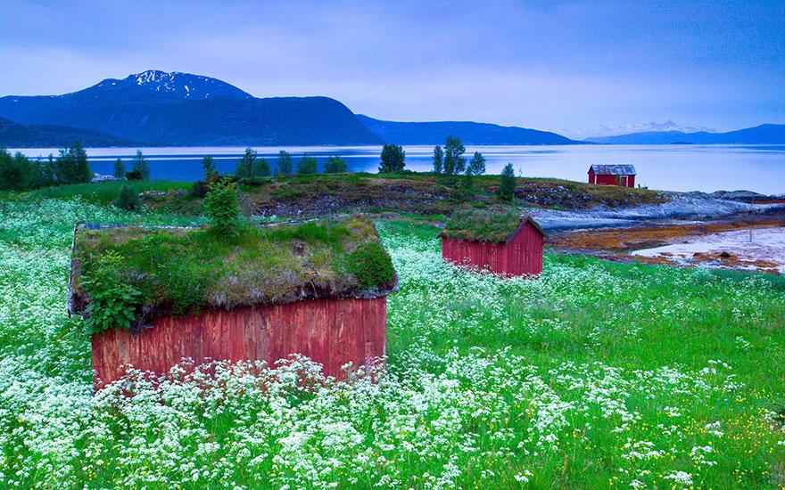 arquitectura-fantastica-noruega-10