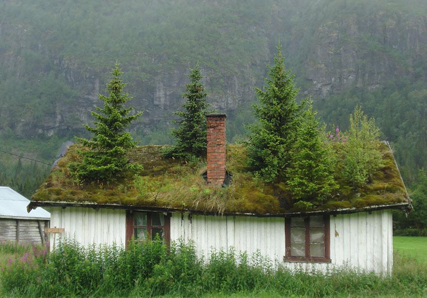 arquitectura-fantastica-noruega-9-2