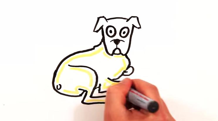 ciencia-perros