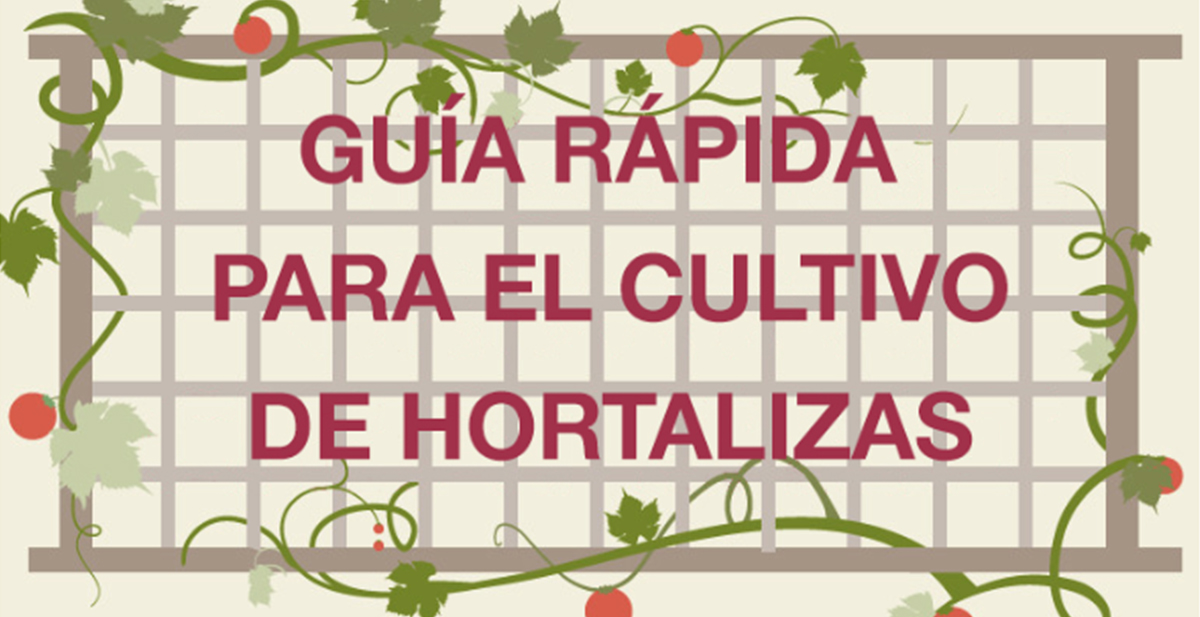 destacada guia rapida hortalizas