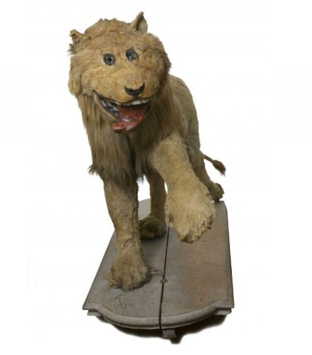 leon sonriente 2