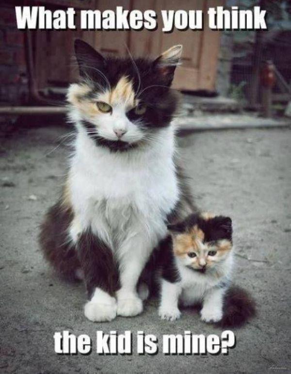 parecidos_padres_12