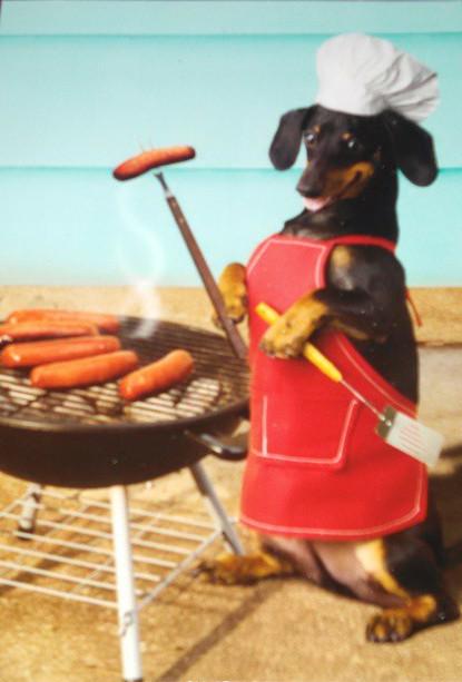 perritos calientes 10