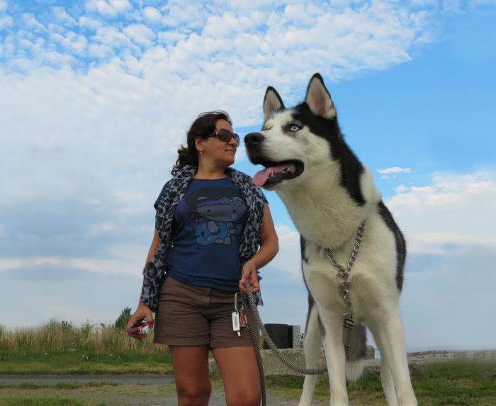 perros que parecen gigantes 6
