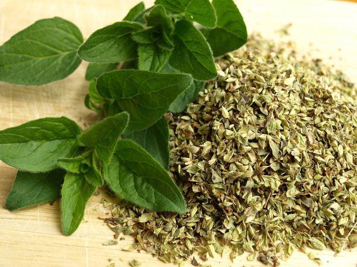 Baños Plantas Medicinales:15 plantas medicinales que puedes plantar tú mismo en casa