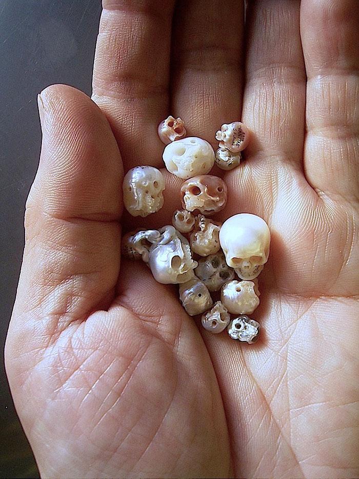 calavera de perla 1