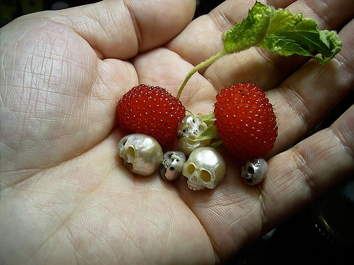calavera de perla 8