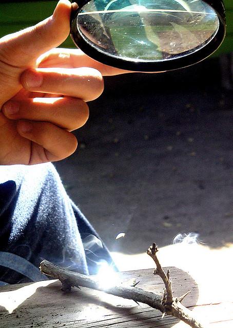 Flickr: camila vaz
