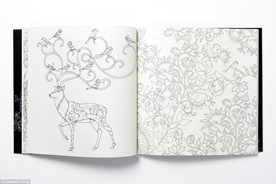 dibujar para adultos 2