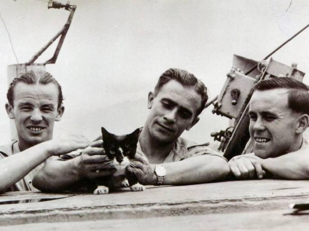 gatos heroicos de la historia 4