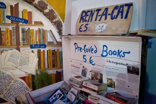 las bibliotecas mas bonitas y magicas del mundo 18