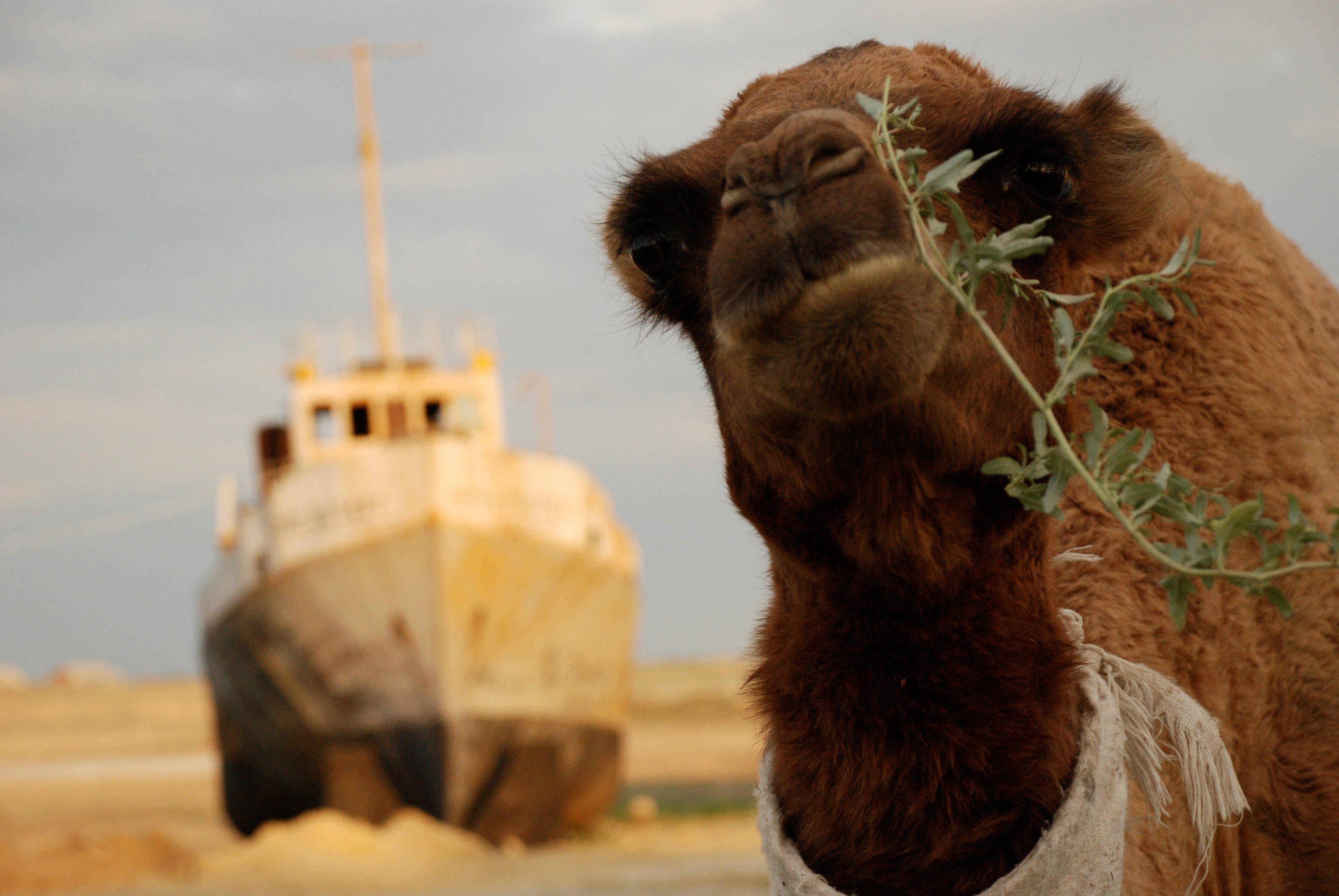 Mar-de-Aral-8
