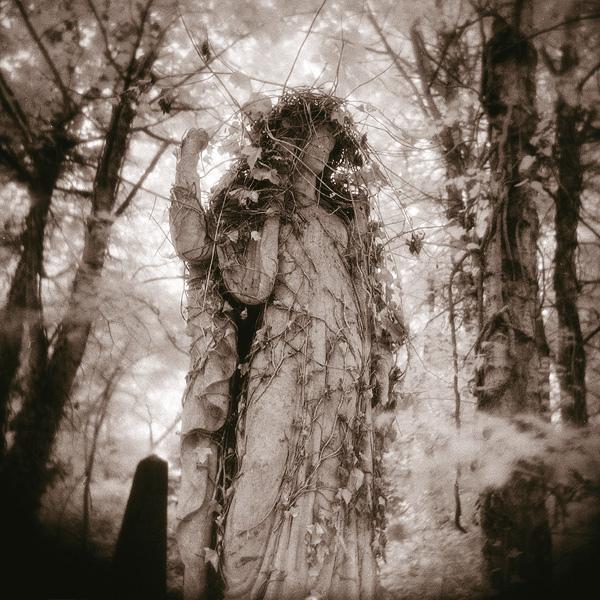 Flickr: Mohain